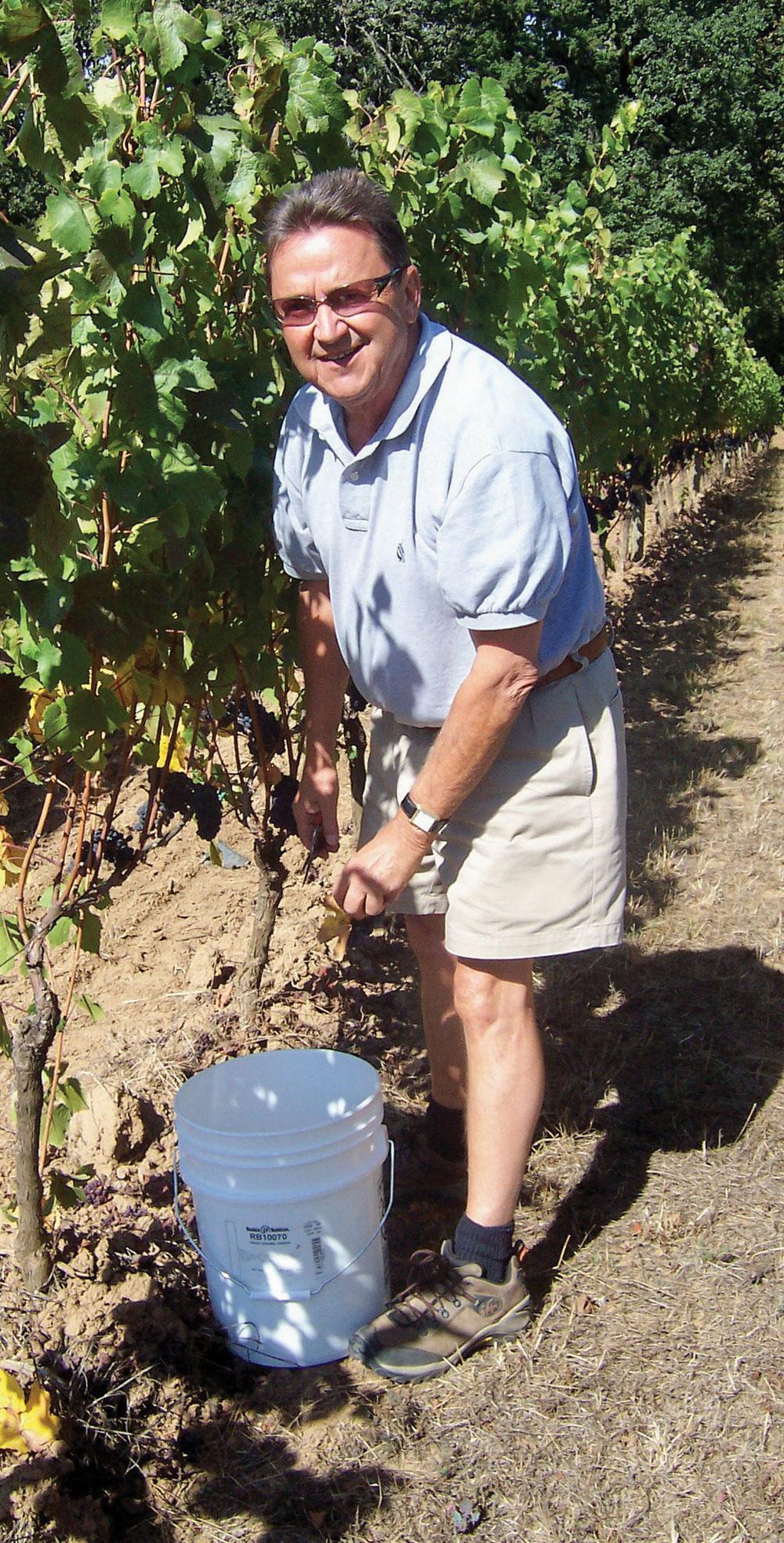 Robert Roy dans son vignoble Domaine Beaux Frères