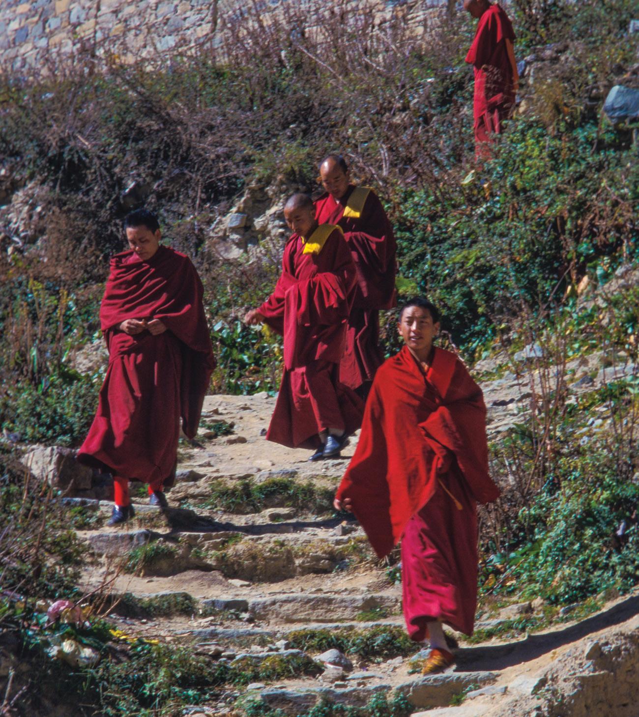 temba-le-tibetain-02