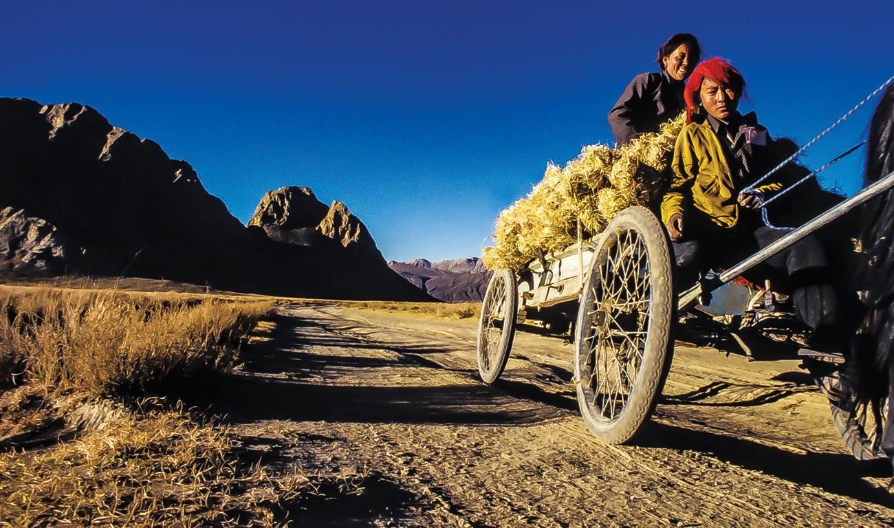 temba-le-tibetain-12
