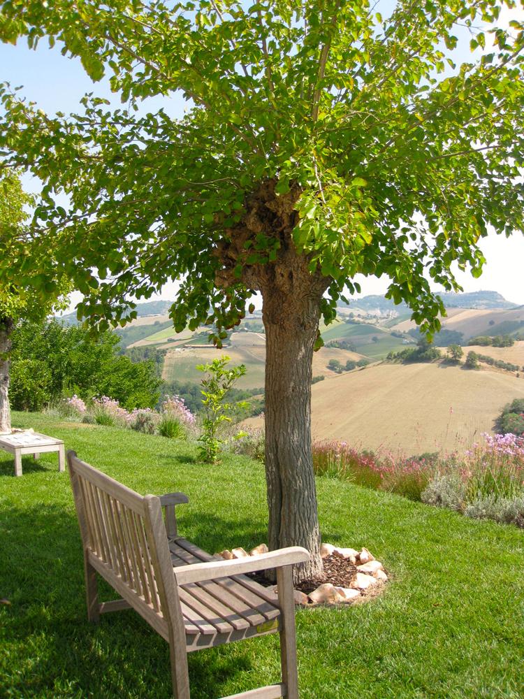 m11-tchin-domodimonti-des-vins-vraiment-naturels-5