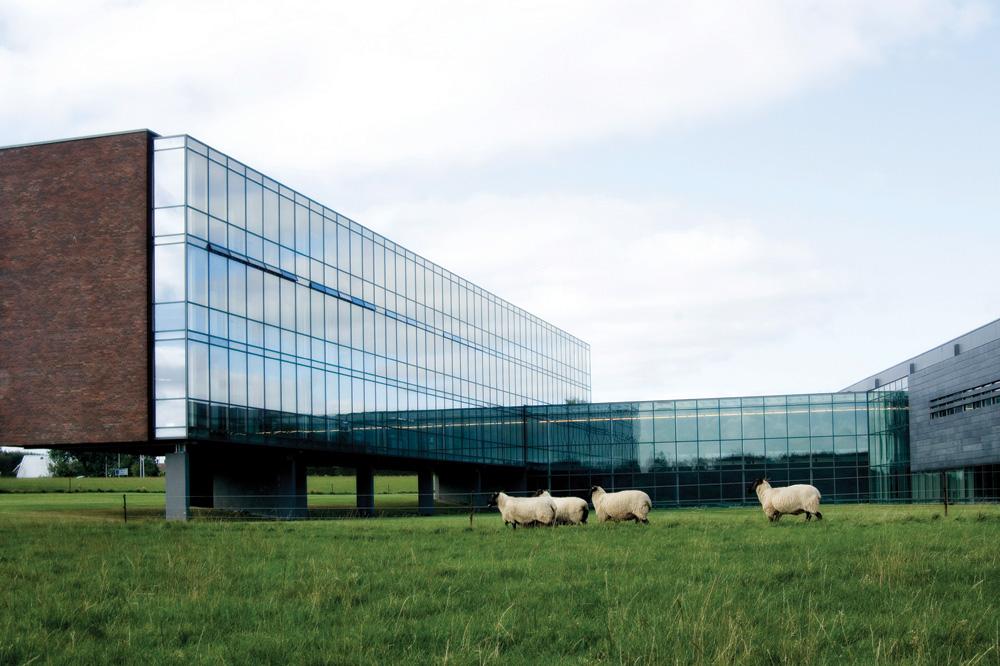 Head office (2011)