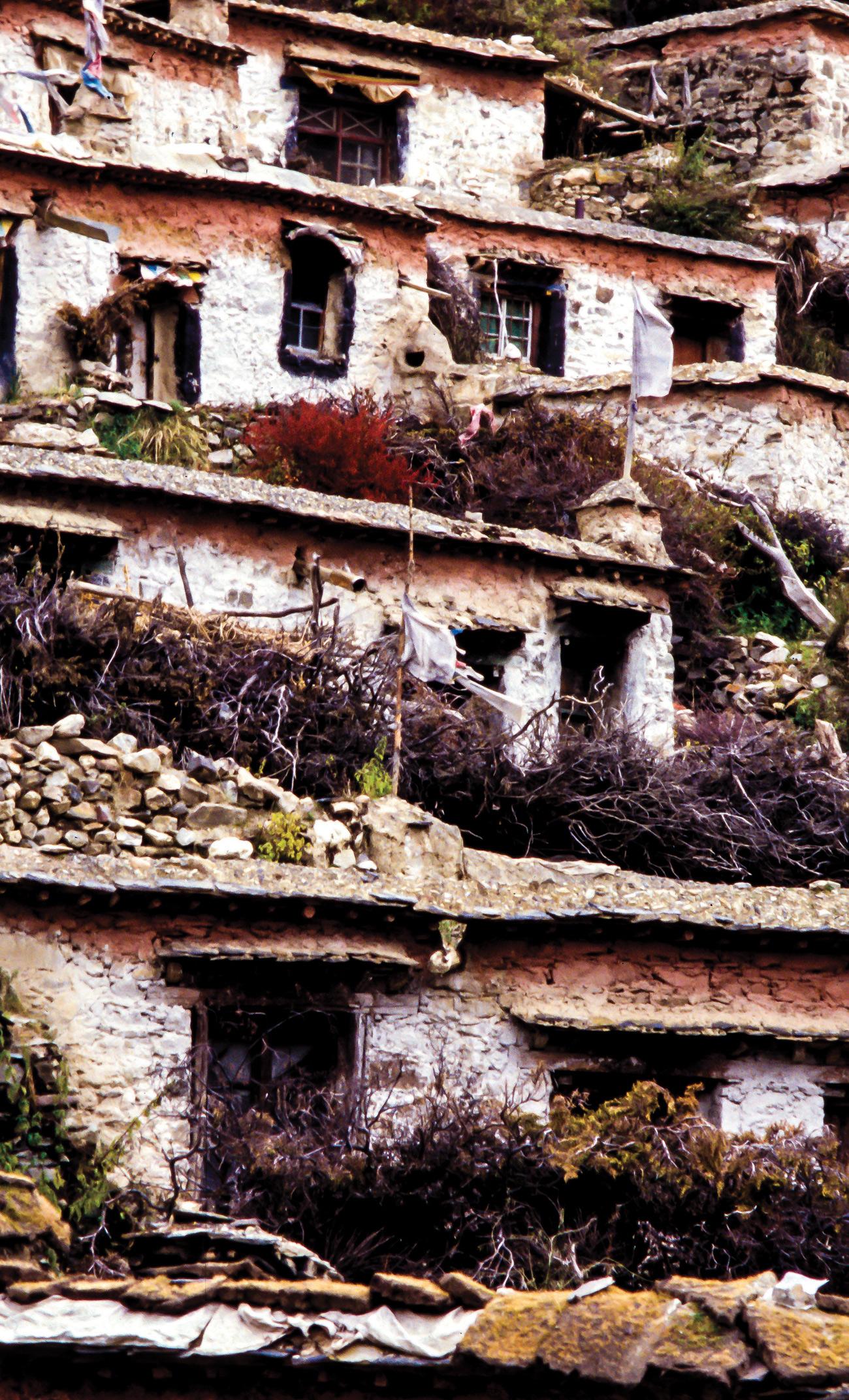 temba-le-tibetain-08
